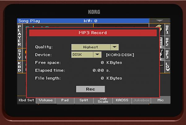 KORG Pa700 ORIENTAL 61-Key Professional Arranger Keyboard – Elevated